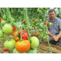 Лимитирующий фактор, или почему мы не получаем хороший урожай